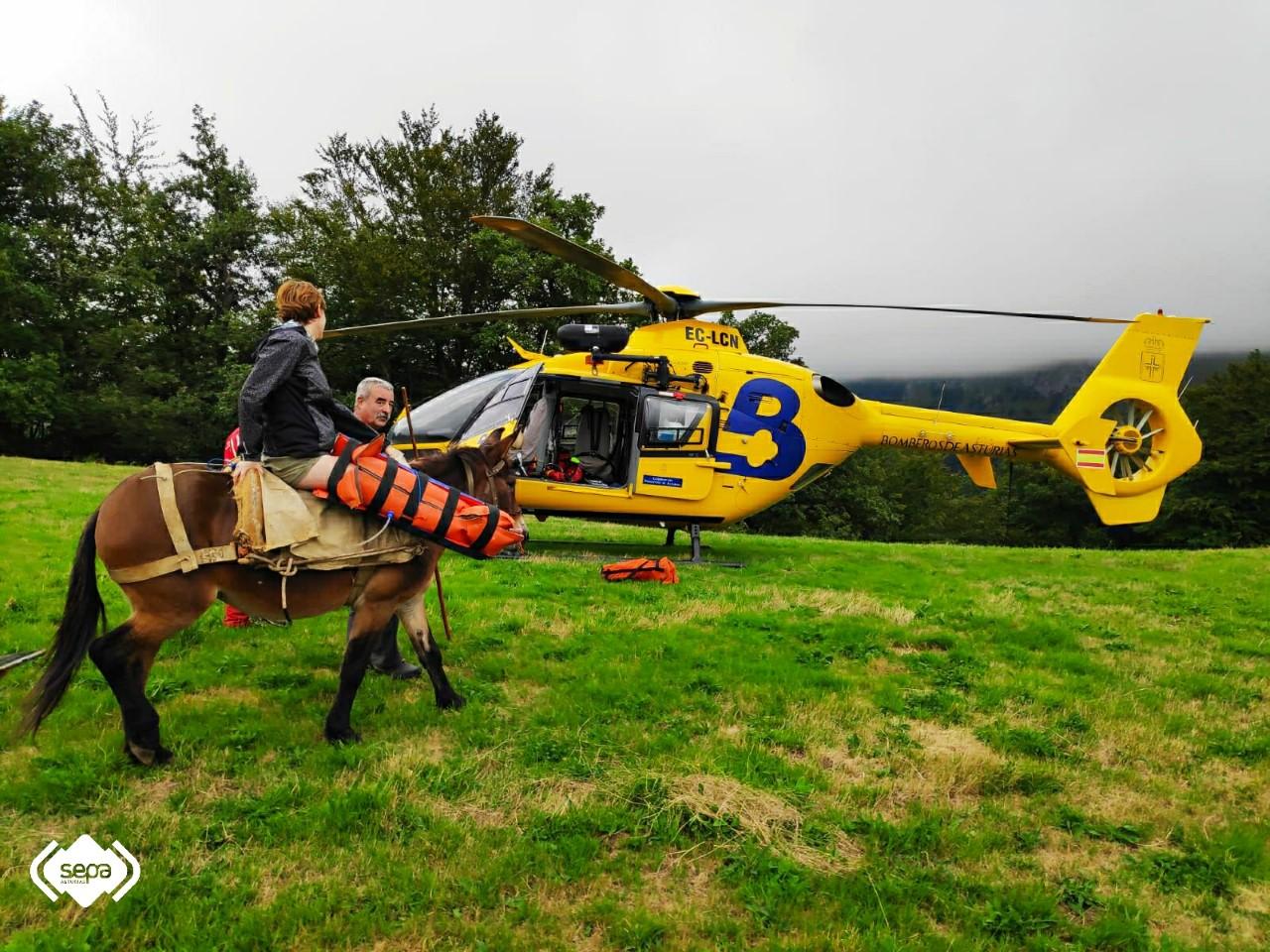 Rescatan a una montañera accidentada en Ponga con la ayuda del caballo de un ganadero