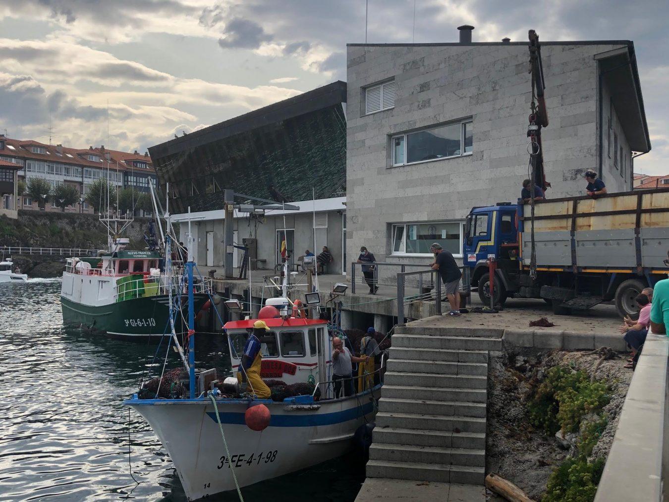 El Uribarri y El Velamar regresan al puerto de Ribadesella tras concluir una buena campaña extractiva de ocle