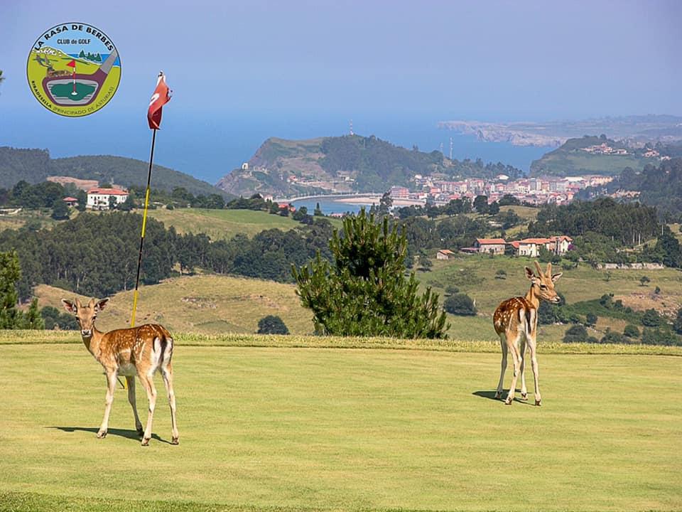 El Torneo Solidario del Club de Golf de Ribadesella recauda 1.130 euros para que Cáritas y Cruz Roja ayuden a los damnificados por la Covid
