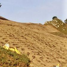 Comienza la plantación de 21.000 pinos en la riosellana Cuesta de Moru