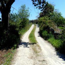 Adjudicada la mejora del camino de acceso al barrio del Ranchito en Parres de Llanes