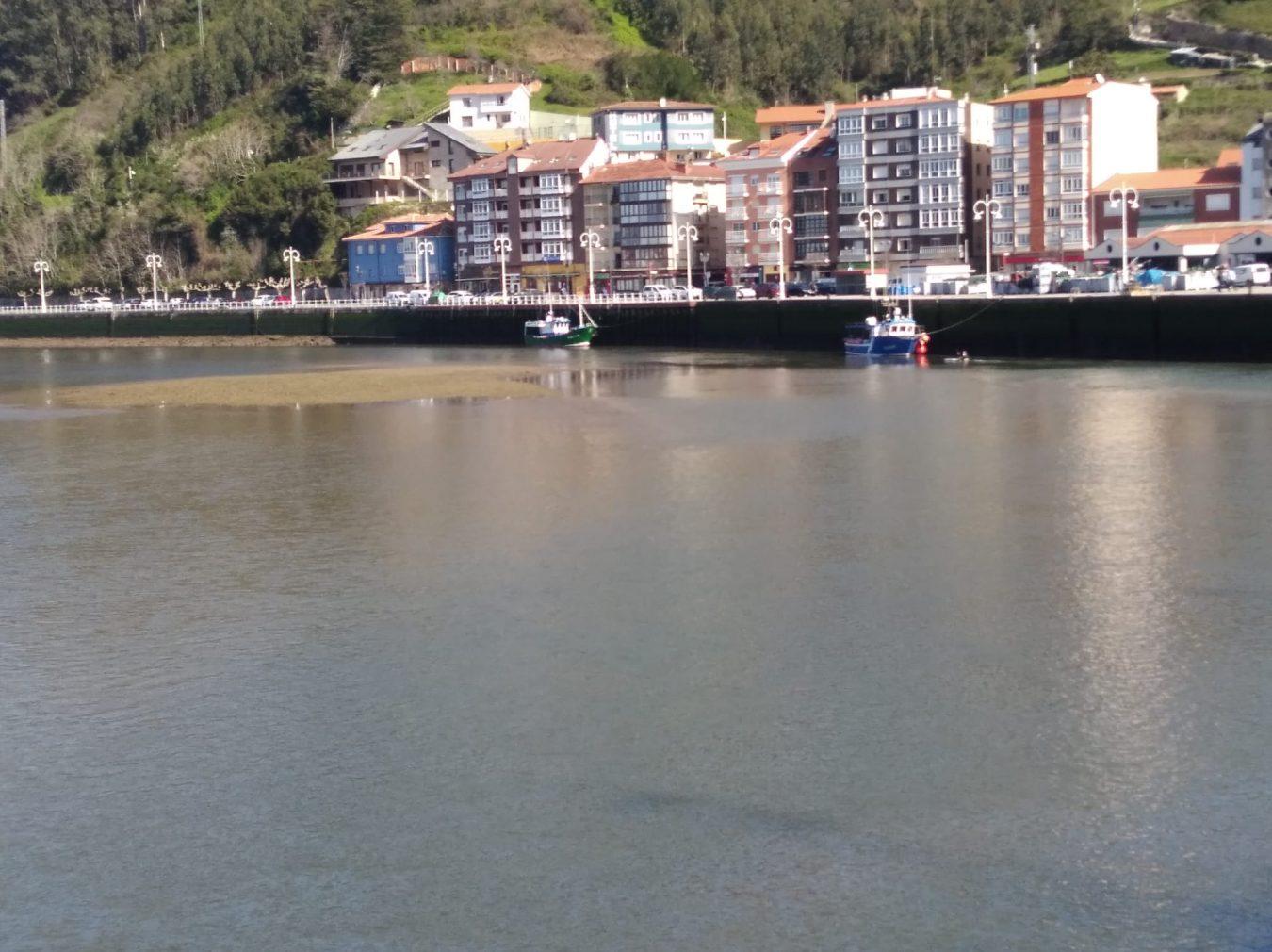 Ciudadanos pedirá la inclusión del dragado del puerto de Ribadesella en los presupuestos asturianos de 2021