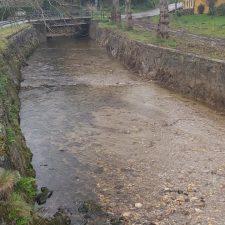 La Confederación invierte 12.000 euros en la limpieza del río Acebu a la altura de Torre (Ribadesella)