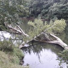 La Confederación concluye los trabajos de limpieza en los ríos Acebu (Ribadesella), Güeña (Cangas de Onís) y Sella (Parres)