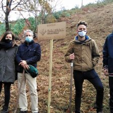 Llanes planta 450 árboles de especies autóctonas en La Cuesta del Cristo