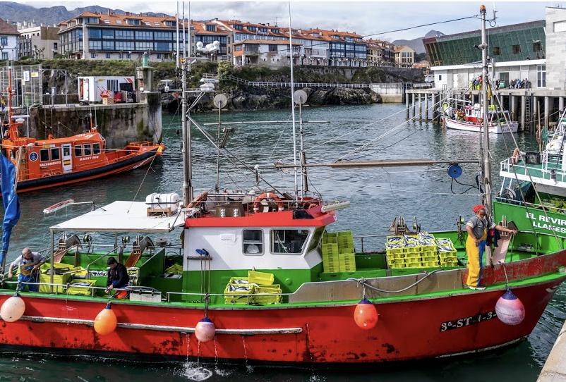 Las cofradías del Oriente de Asturias pierden un millón y medio de euros en la facturación de 2020
