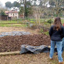 El Ayuntamiento de Llanes readjudicará los huertos urbanos de La Llavandera que están en desuso