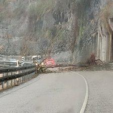 Un árbol corta la carretera N-634 a la altura de Soto de Dueñas, concejo de Parres