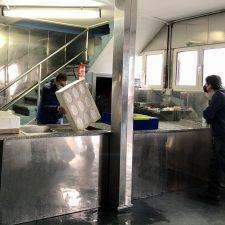 La angula se desvanece en Ribadesella y marca una caída histórica en el mes de enero con un descenso del 66%