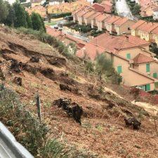 El Contencioso de Sellamar contra el Ayuntamiento de Ribadesella sigue su proceso en los juzgados