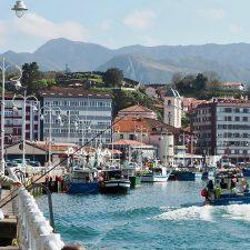 La costera de la xarda anima el puerto pesquero de Ribadesella tras una pésima temporada de angula