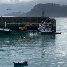 Comienza el dragado de la bocana del puerto de Lastres para facilitar las maniobras de cara a la campaña de la xarda