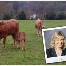 La alcaldesa de Ponga convoca a los ganaderos del concejo a una concentración contra la protección del lobo