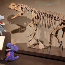 El MUJA celebrará el Día Mundial de la Marioneta con la presencia de Dinotíteres
