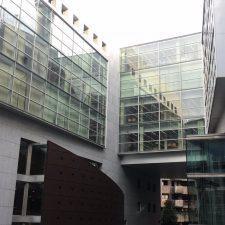 Doce años de prisión para el acusado del homicidio de David Carragal y multas de 2.500 euros para sus compañeros