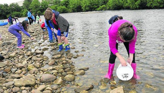 El Esmerillón incluirá los ríos colungueses de Pivierda y Llibardón en su repoblación anual con truchas