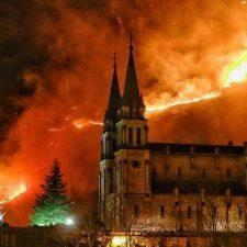 El Estado invierte 150.000 euros para restaurar el terreno quemado en Covadonga el pasado mes de febrero