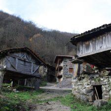Fallece un vecino de Ponga cuando podaba un árbol en la localidad de Viboli