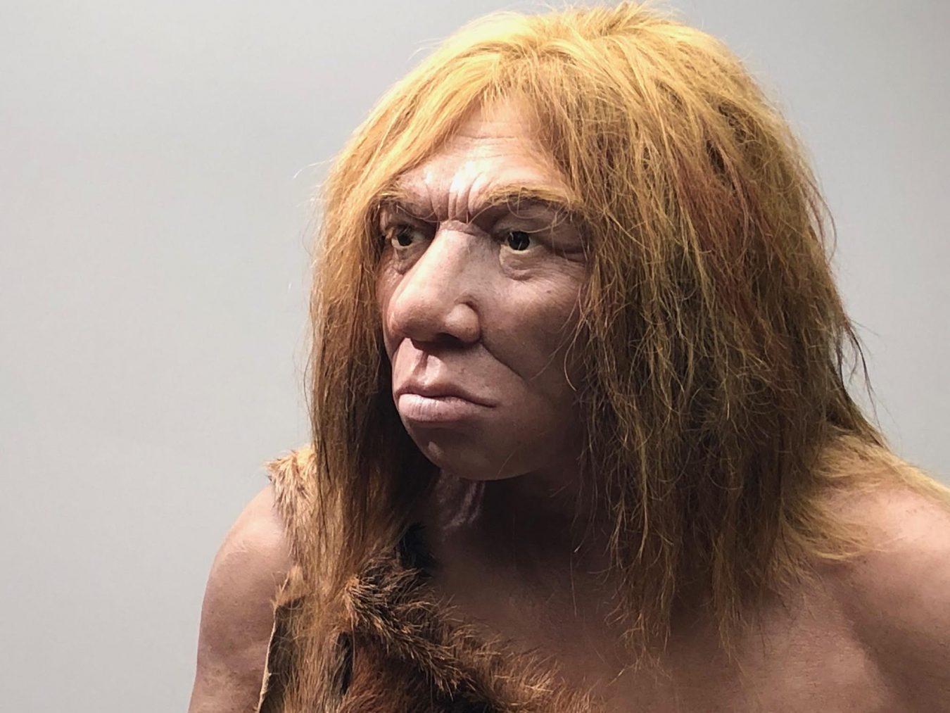 Ribadesella acogerá un Curso de Verano de la UNED sobre los 150 años de investigación prehistórica en el valle del Sella