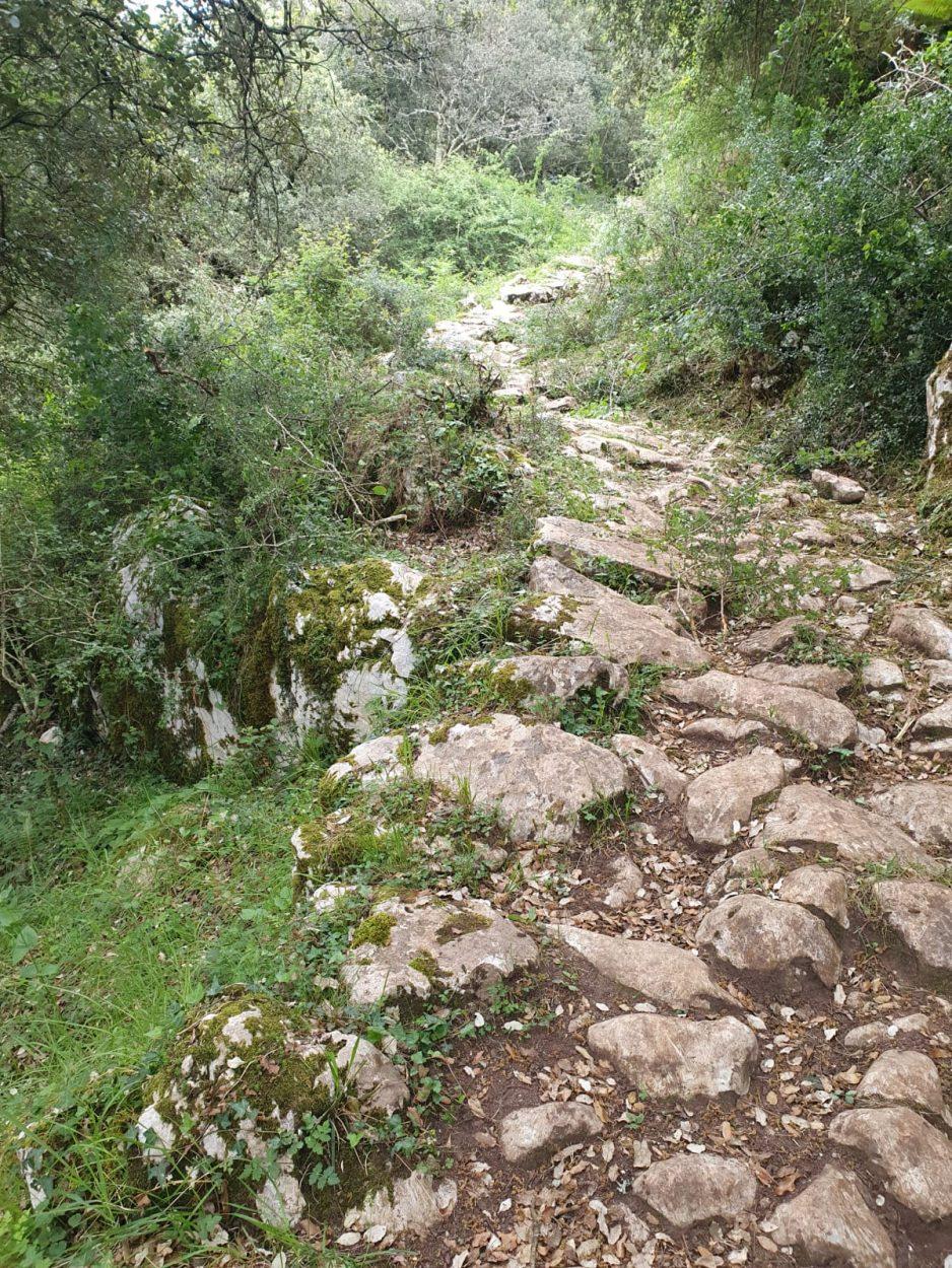 Sextaferia vecinal en la calzada romana de Caoru para despejarla de cara a La Travesera de los Picos de Europa