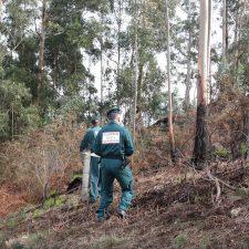 La Fiscalía denuncia a un ganadero por el incendio de febrero en Covadonga