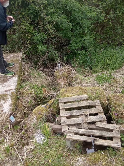 Podemos Llanes denuncia vertidos ilegales a un arroyo procedentes de la depuradora de Ardisana