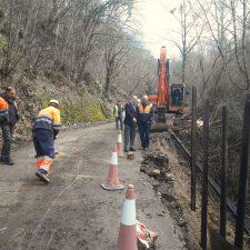 La mejora de la carretera de Llonín (Peñamellera Alta) finaliza con nueve meses de antelación